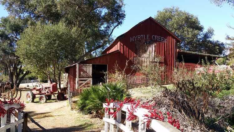 A Unique Fallbrook Find Myrtle Creek Botanical Gardens And Nursery The Vista Press The Vista