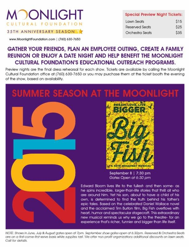 bigfishpreviewad