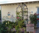 Hawks Secret Garden