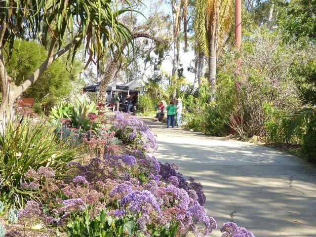 Big Plant Sale Alta Vista Gardens Saturday May 7th The Vista Press The Vista Press