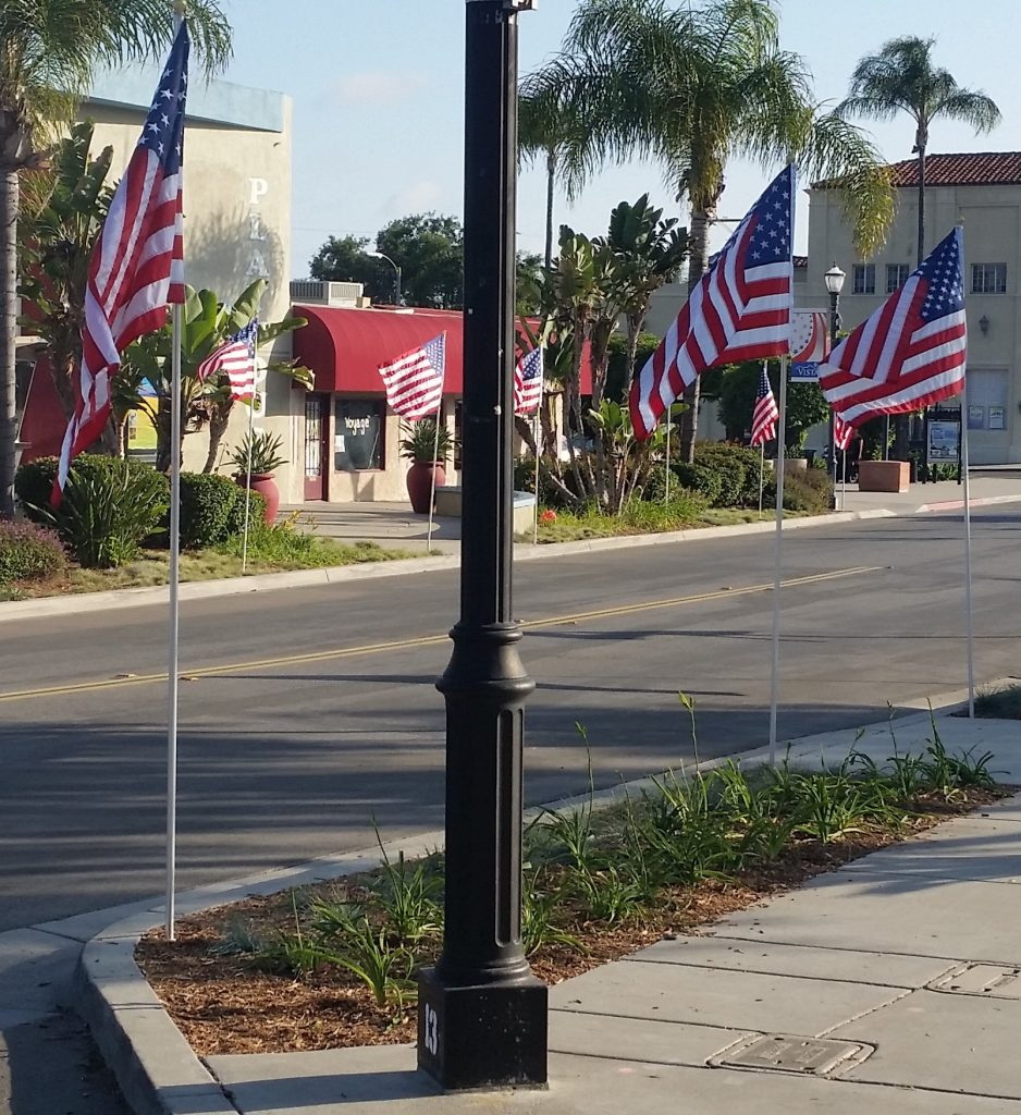 Flags along Main Street 02